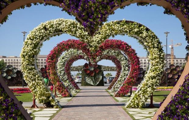 «Miracle Garden» Ο κήπος των θαυμάτων στο Ντουμπάι και δεν υπάρχει παρόμοιος σε όλο τον κόσμο. - Φωτογραφία 2