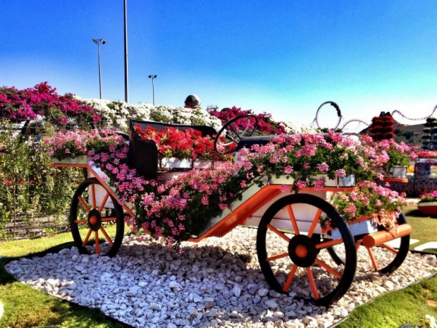 «Miracle Garden» Ο κήπος των θαυμάτων στο Ντουμπάι και δεν υπάρχει παρόμοιος σε όλο τον κόσμο. - Φωτογραφία 21