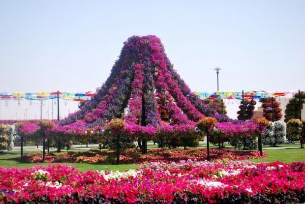 «Miracle Garden» Ο κήπος των θαυμάτων στο Ντουμπάι και δεν υπάρχει παρόμοιος σε όλο τον κόσμο. - Φωτογραφία 25
