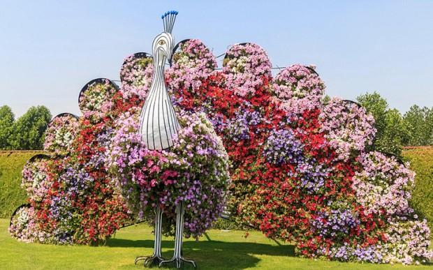«Miracle Garden» Ο κήπος των θαυμάτων στο Ντουμπάι και δεν υπάρχει παρόμοιος σε όλο τον κόσμο. - Φωτογραφία 7
