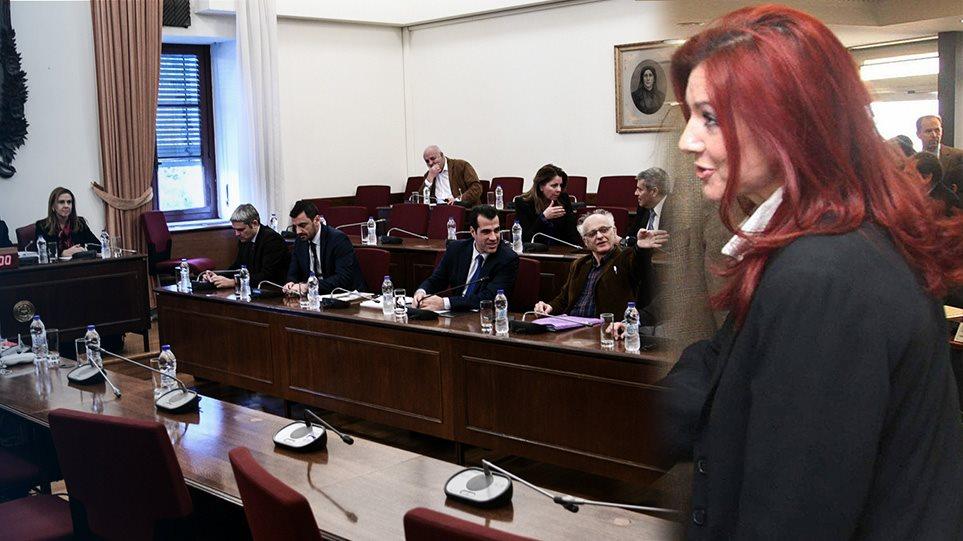 Ράικου στην προανακριτική για Novartis: Ο Παπαγγελόπουλος με τις ενέργειές του ήθελε κατάλυση της Δημοκρατίας - Φωτογραφία 1