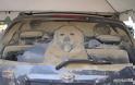 Έργα τέχνης σε σκονισμένα αυτοκίνητα! (Photos) - Φωτογραφία 8