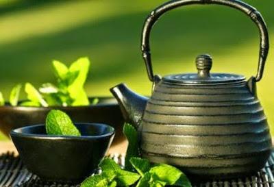Βότανα κατάλληλα για παθήσεις του αναπνευστικού, με αποχρεμπτική, αντιβηχική, βλεννολυτική δράση - Φωτογραφία 1