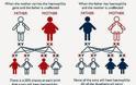 Αιμορροφιλία. Τι είναι, τι προκαλεί και πώς αντιμετωπίζεται; Πρώτες βοήθειες αιμορραγικού επεισοδίου - Φωτογραφία 3