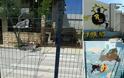 7ο Δημοτικό Σχολείο Αρτέμιδας - «Μπράβο»...τα κατάφερες!!!»