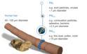 Νέα τεχνολογία για την προστασία της αναπνοής από ιούς και αλλεργίες - Φωτογραφία 2