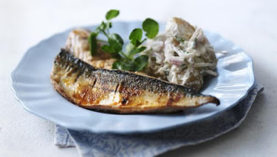 Κολιός, ψάρι πλούσιο σε ωμέγα-3 λιπαρά οξέα. Διαφορές από το σκουμπρί. ΠΟΤΕ τον Αύγουστο! - Φωτογραφία 3