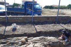 Βρέθηκε γιγαντιαίος κορμός απολιθωμένου δένδρου στη Λήμνο