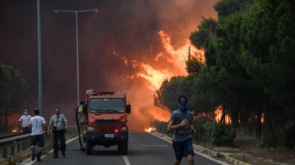 Καταθέσεις σοκ στο Μάτι: Η ηγεσία της Πυροσβεστικής αγνόησε τις εκκλήσεις αξιωματικών για εναέρια μέσα - Φωτογραφία 1
