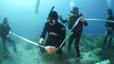 Αλόννησος: Εγκαινιάστηκε το πρώτο υποβρύχιο μουσείο της Ελλάδας - Ο «Παρθενώνας των ναυαγίων» - Φωτογραφία 1
