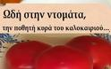 Ωδή στην ντομάτα, την ποθητή κυρά του καλοκαιριού…