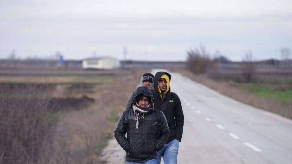 Έβρος: Τούρκοι που μπήκαν παράνομα στην Ελλάδα επιτέθηκαν σε κτηνοτρόφο - Φωτογραφία 1