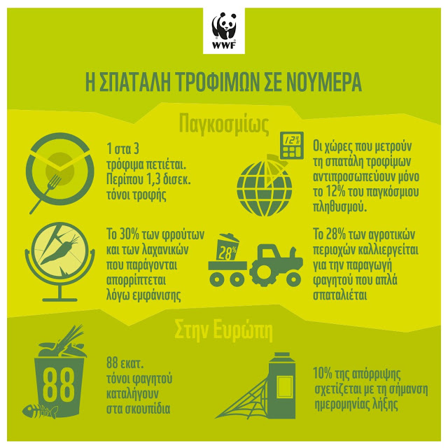 WWF Ελλάς: στην Ευρώπη 88 εκατομμύρια τόνοι τροφίμων ετησίως καταλήγουν στα σκουπίδια - Φωτογραφία 3