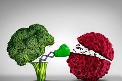 Έρευνα έδειξε ότι το μπρόκολο προστατεύει από τον καρκίνο του ήπατος (συκώτι)