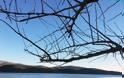 Αποτελέσματα φωτογραφικού διαγωνισμού  Δήμος Ξηρομέρου -πηγή έμπνευσης