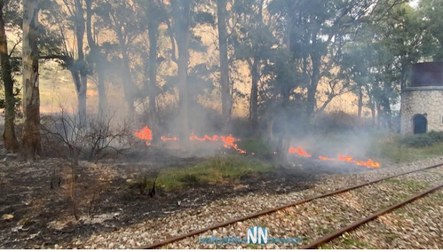 Ναυπακτία – Κρυονέρι: Κάηκε σκεπή από παλιό σταθμό του ΟΣΕ – Απειλήθηκαν σπίτια από την μεγάλη φωτιά. Εικόνες και βίντεο. - Φωτογραφία 3