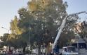 Δήμος Αγρινίου: Εργασίες καθαρισμού και κοπής των χόρτων στην εθνική οδό.