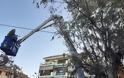 Δήμος Αγρινίου: Εργασίες καθαρισμού και κοπής των χόρτων στην εθνική οδό. - Φωτογραφία 2