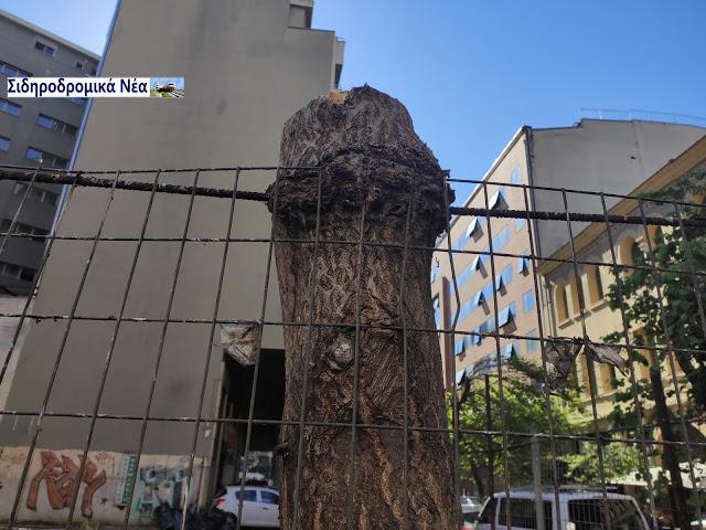 Θεσσαλονίκη: Καθαρίστηκε επιτέλους το πρώην οικόπεδο του ΟΣΕ στην οδό Φράγκων. Εικόνες. - Φωτογραφία 4