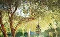 Καλοκαιρινές διαμορφώσεις για  Κήπο - Μπαλκόνι - Φωτογραφία 28