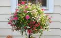 Διαμορφώσεις για μικρούς κήπους - αυλές - Φωτογραφία 22