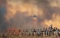 Σικελία: Σε εξέλιξη πάνω από 160 πυρκαγιές - Υπόνοιες για εμπρησμούς