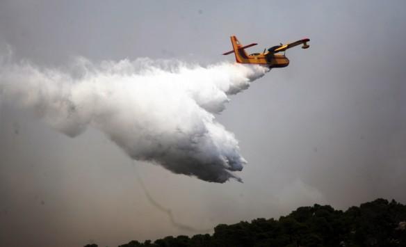 Μεγάλος κίνδυνος πυρκαγιών στη Β. Ελλάδα λόγω της έντονης βλάστησης - Φωτογραφία 1