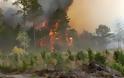 Υπό έλεγχο η φωτιά στην Ανάβυσσο - Nέο μέτωπο στα Μέγαρα
