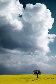 Μὴν κάνεις στοὺς ἄλλους  αὐτὸ ποὺ δὲν θέλεις νὰ κάνουν ἐκεῖνοι σ᾿ ἐσένα - Φωτογραφία 1