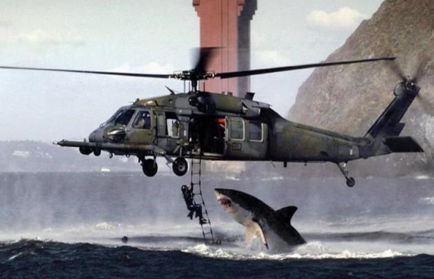 ΑΠΙΣΤΕΥΤΗ ΦΩΤΟΓΡΑΦΙΑ: Καρχαρίας...εναντίον ελικοπτέρου! - Φωτογραφία 1