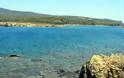 ''Στο σφυρί'' καταπράσινο νησάκι στη Χαλκιδική - Φωτογραφία 3