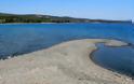 ''Στο σφυρί'' καταπράσινο νησάκι στη Χαλκιδική - Φωτογραφία 4