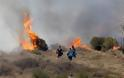 Τεράστια η καταστροφή από την πυρκαγιά στο Πεδίο Βολής Γουβών - Δείτε φωτογραφίες - Φωτογραφία 3