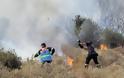Τεράστια η καταστροφή από την πυρκαγιά στο Πεδίο Βολής Γουβών - Δείτε φωτογραφίες - Φωτογραφία 4