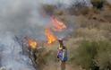 Τεράστια η καταστροφή από την πυρκαγιά στο Πεδίο Βολής Γουβών - Δείτε φωτογραφίες - Φωτογραφία 5