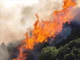 Μεγάλος ο κίνδυνος φωτιάς το Σάββατο - Φωτογραφία 1