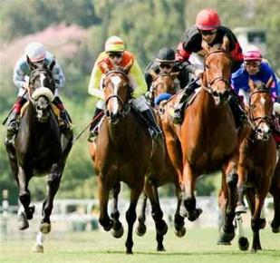 Ομογενής πλήρωσε 2,6 εκατ. δολάρια για άλογο κούρσας - Φωτογραφία 1