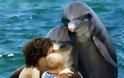 Ο θαυμαστός κόσμος των ζώων - Φωτογραφία 7
