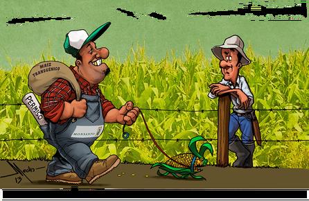Αργεντινή: Τα φυτοφάρμακα της Μονσάντο σκοτώνουν αγρότες και οικονομία - Φωτογραφία 2