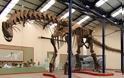Ο μεγαλύτερος δεινόσαυρος στον κόσμο περπατά και πάλι μετά από 94 εκατ. χρόνια [video]