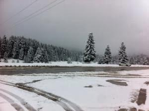 Με χιόνι τα κούλουμα στα Ορεινά Τρικάλων - Φωτογραφία 2