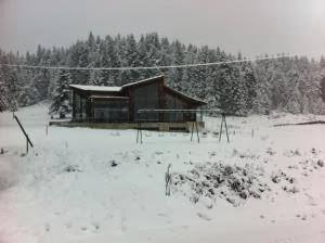 Με χιόνι τα κούλουμα στα Ορεινά Τρικάλων - Φωτογραφία 3
