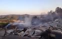 Κάηκαν 40.000 στρέμματα δάσους στα Τρίκαλα - Εικόνες από δορυφόρο