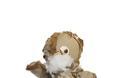 Αγαπάς τα λούτρινα αρκουδάκια; Τότε μην δεις αυτό το άρθρο...[photos] - Φωτογραφία 2