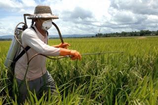 Έλεγχοι για υπολείμματα φυτοφαρμάκων σε γεωργικά προϊόντα - Φωτογραφία 1