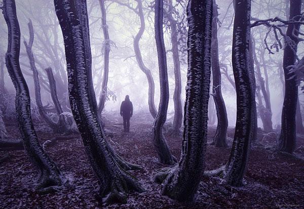 Τα πιο μυστήρια δάση όλων των εποχών [photos] - Φωτογραφία 11