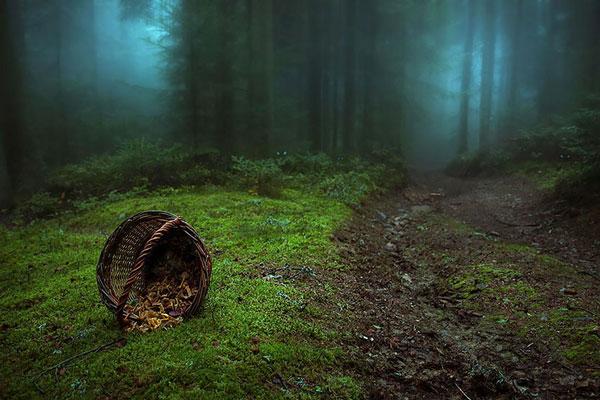 Τα πιο μυστήρια δάση όλων των εποχών [photos] - Φωτογραφία 9