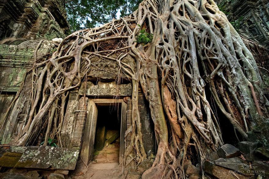 Εκεί που η φύση νίκησε τον πολιτισμό... Ανατριχιαστικές φωτογραφίες [photos] - Φωτογραφία 16