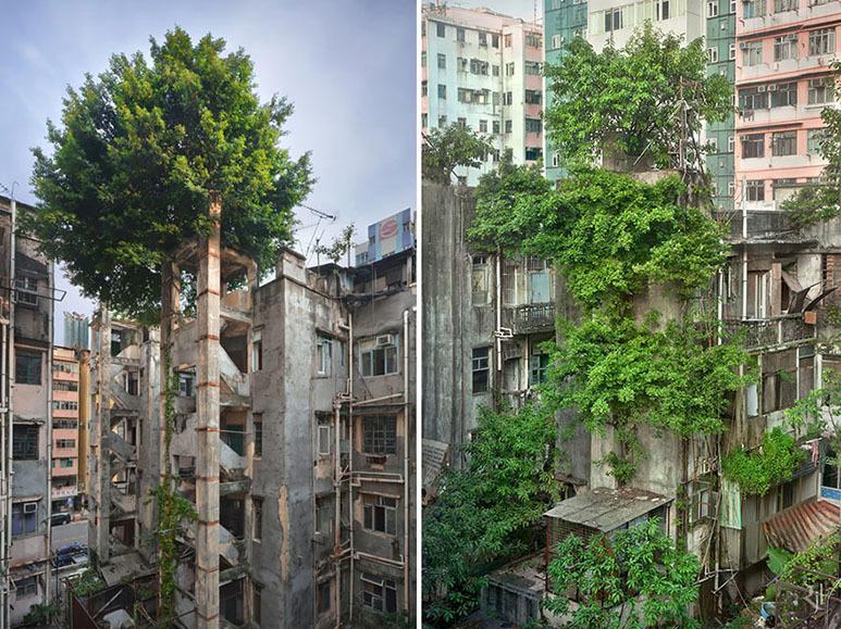 Εκεί που η φύση νίκησε τον πολιτισμό... Ανατριχιαστικές φωτογραφίες [photos] - Φωτογραφία 9