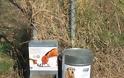 Οι περιοχές με ταΐστρες και ποτίστρες για τα αδέσποτα ζώα στον Δήμο Αχαρνών - Φωτογραφία 8
